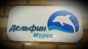Дельфин мурок